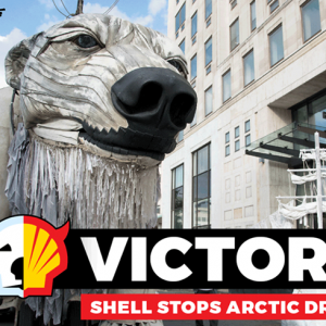 Shell back out of Arctic Drilling