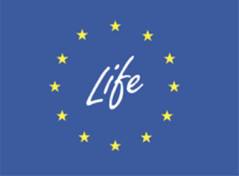Life+ Logo Colour