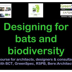 BioDiversityDesigningBatsBuildings_Page_1