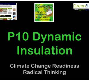 P10DynamicInsulation