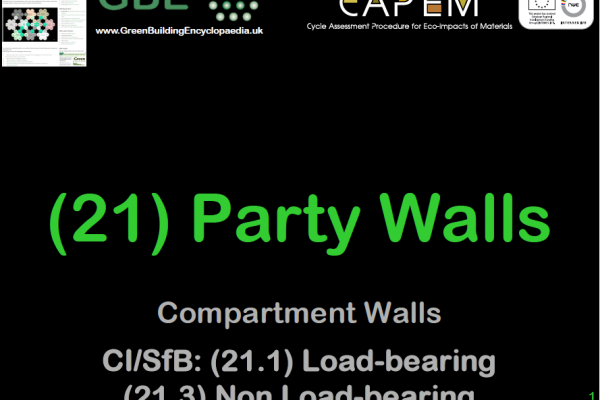 GBE Lecture(21)PartyWalls S1