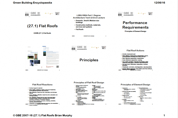 GBE Lecture(27.1)FlatRoofs 9H1