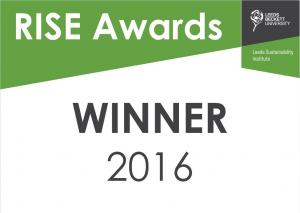 LSI RISE awards 2016 winner