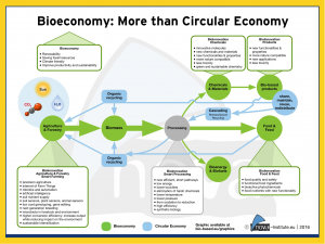 bioeconomy more than circular economy Flow diagram