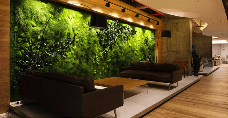 Biophilic Design in Student Space