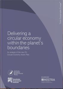 Delivering Circular Economy IEEP