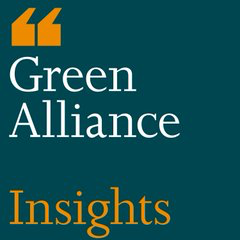 Green Alliance Insights Logo