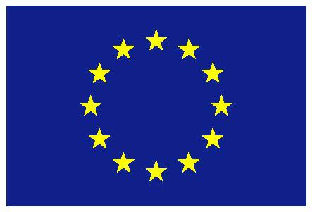 EUFlagLogo.png
