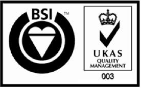 BSI ISO 9000 Logo png