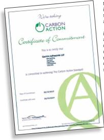 Gemini Carbon Action png