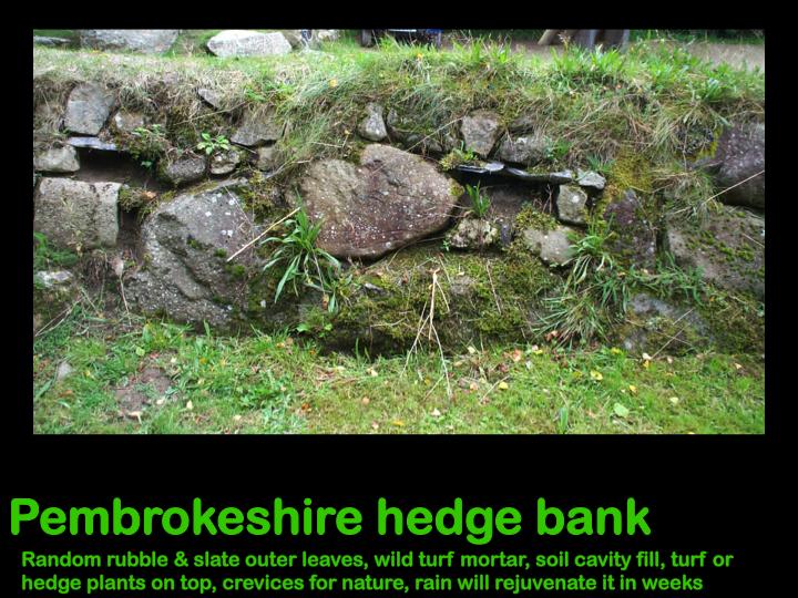 Hedge Bank Walling Side png