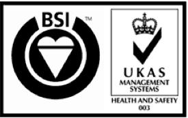 BSI ISO 18000 Logo png